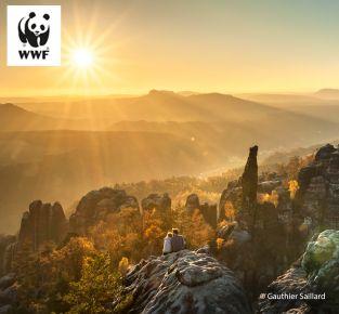Naturfotografie in der Sächsischen Schweiz