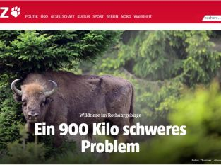 """Taz-Artikel: """"Ein 900 Kilo schweres Problem"""""""